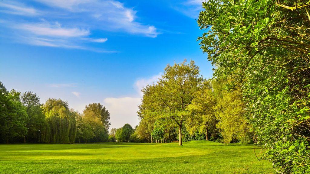 Immagine Area Tematica Ambiente, verde e rifiuti
